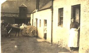 Milton Dairy 1908